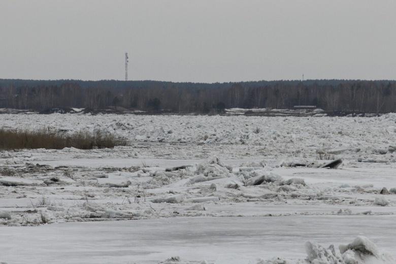 уровень воды в оби 2012: