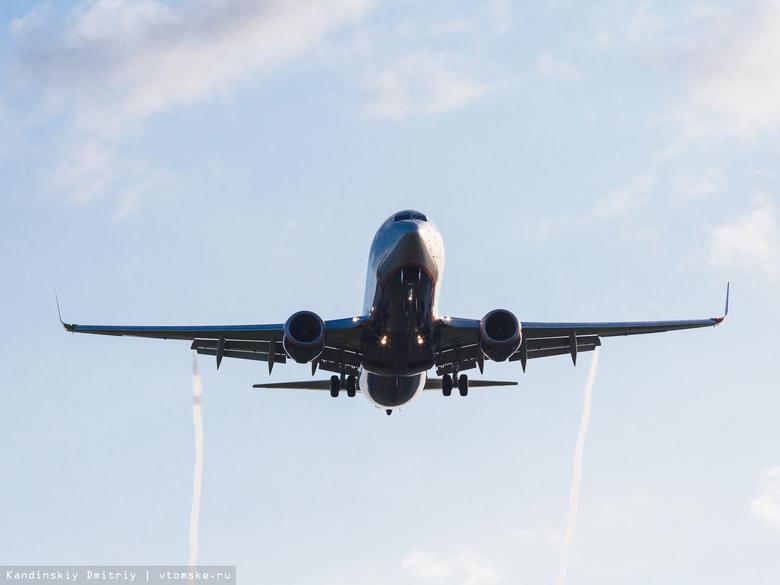 Очередная птица угодила в мотор самолета при посадке вТомске