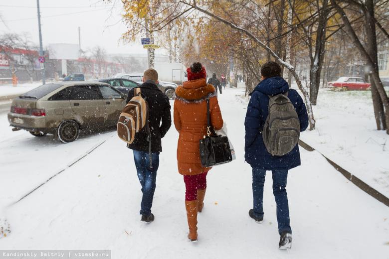 На праздничных выходных томичей ожидает плюсовая температура и снег