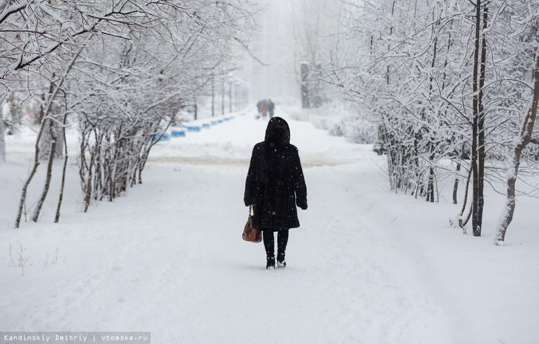 В среду в Томске ожидаются сильный мокрый снег и усиление ветра