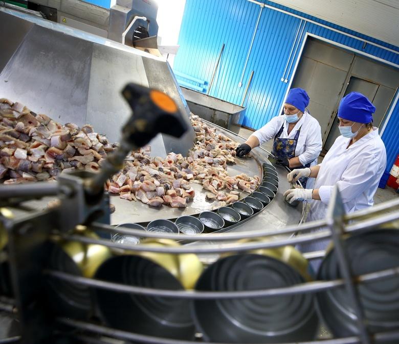 Рыбозавод на севере Томской области за год выпустил около 1,5 тыс консервов