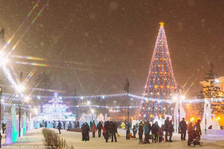 Морозная погода ожидается в Томске в новогоднюю ночь