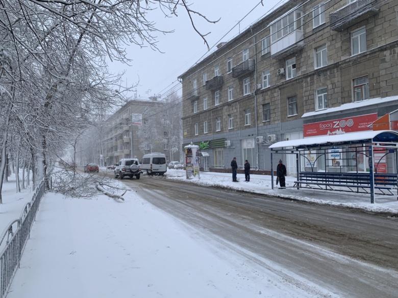 В Томске за ночь выпало до 1,2 сантиметра снега