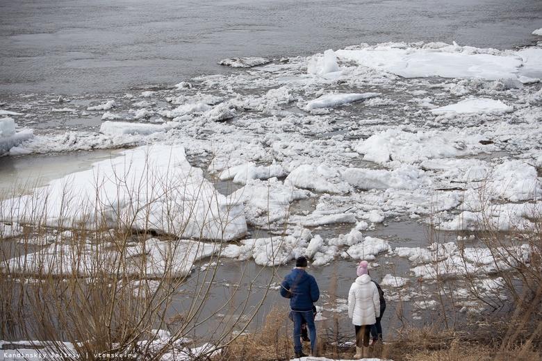 МЧС: 29 сел Томской области рискуют быть отрезанными от Большой земли в паводок