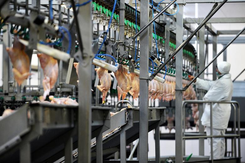 «Межениновка» вложит в реконструкцию мясокомбината 250 миллионов