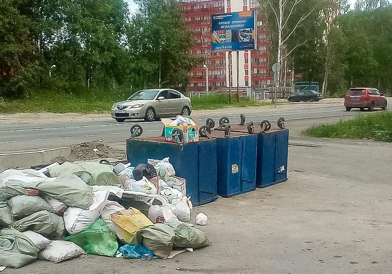 Мэр Томска выразил недоумение по поводу перевернутых мусорных баков
