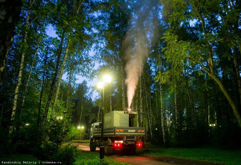 Почти 50 млн руб направит Томская область на борьбу с шелкопрядом в 2019г