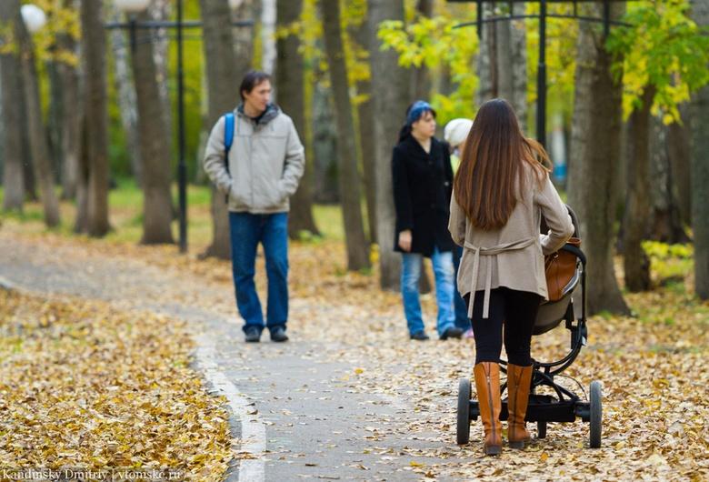 Власти: число томских семей, получающих выплату на первенца, выросло за год на 2 тыс