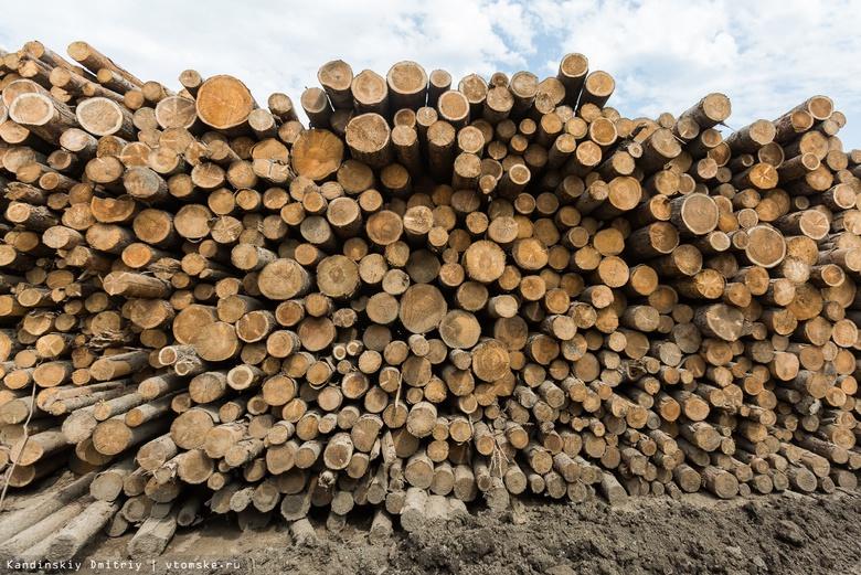 Томская область выставит на торги 5 тыс кубометров древесины