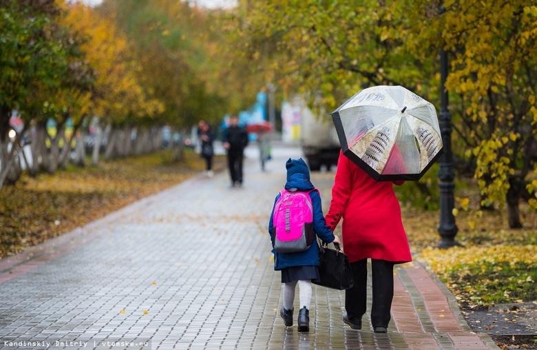 Синоптики прогнозируют на понедельник грозы и сильный ветер в Томской области