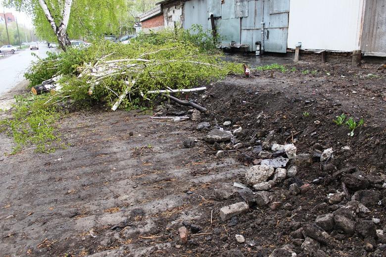 Народные новости: томичи возмущены вырубкой деревьев на Иркутском тракте
