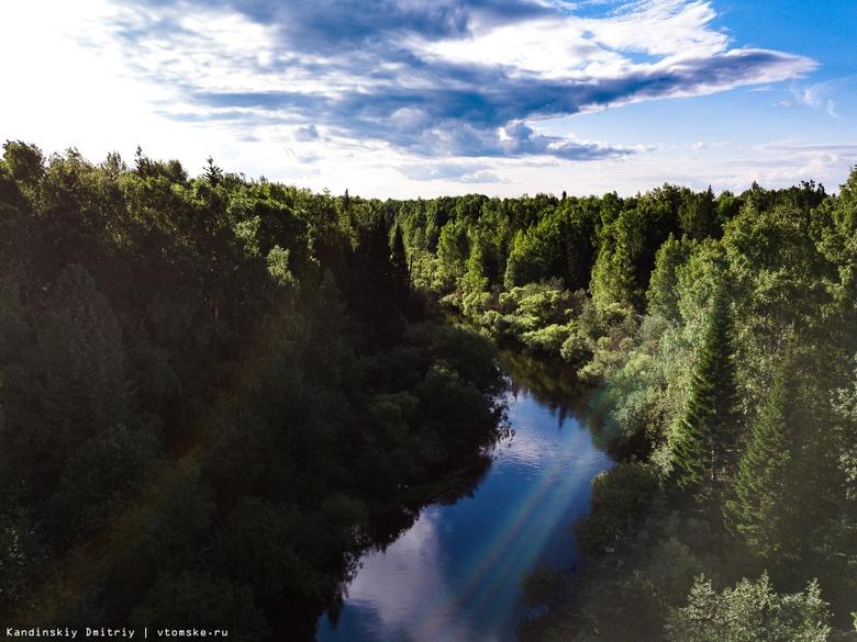 Почти 20 человек спасены за полгода на водоемах Томской области