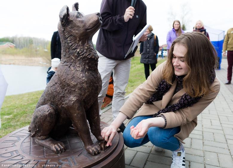 Томичи за год пожертвовали около 43 тыс руб в памятник-копилку для бездомных животных