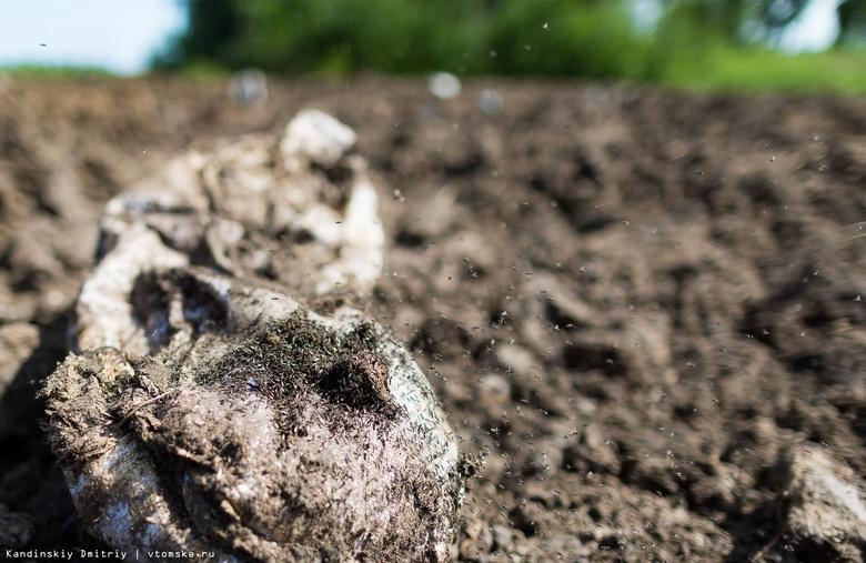 Россельхознадзор обнаружил более 20 га куриного помета в Томском районе