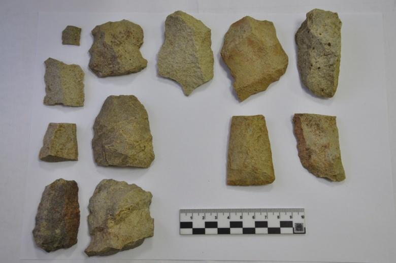 В Томской области нашли уникальный памятник археологии