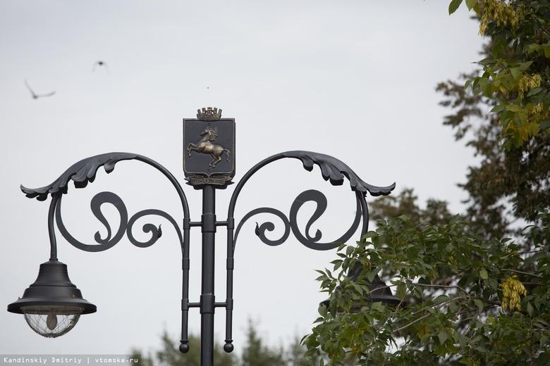 Народные новости: Михайловская роща Томска в потемках