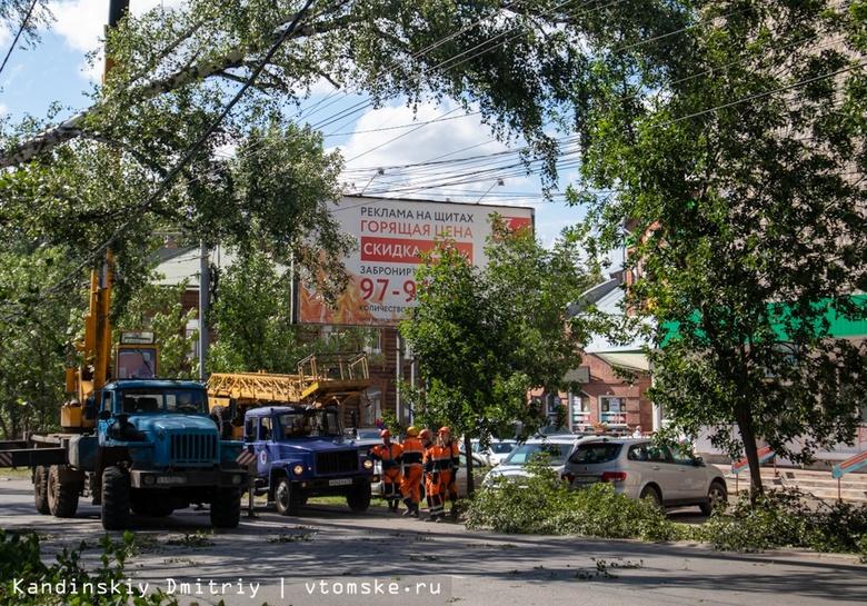Дерево упало на маршрутку в центре Томска