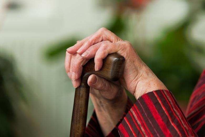 Волонтеры передадут 20 тыс продуктовых наборов томским пенсионерам