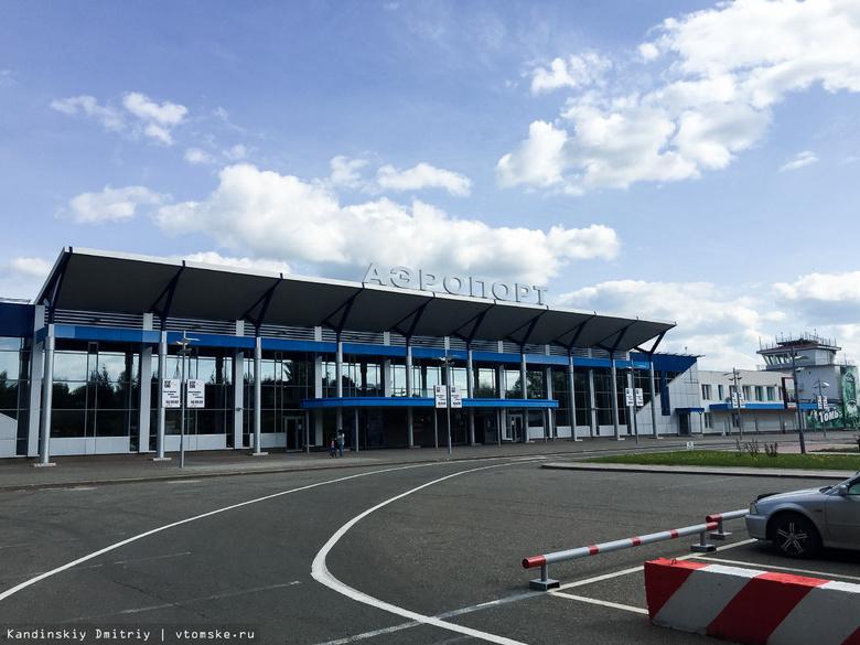 Томский аэропорт закупит механические приборы для отпугивания птиц