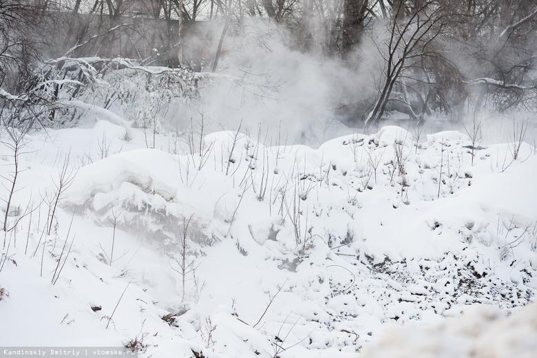 Суд обязал мэрию Томска ликвидировать тлеющую мусорную свалку на Каштаке