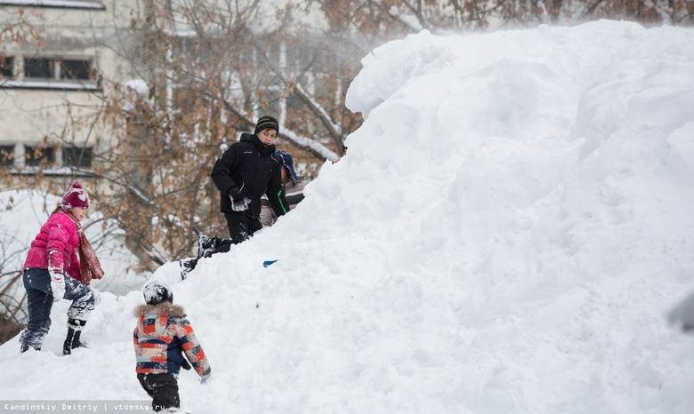 Прокуратура потребовала от мэрии Томска убрать снег на 11 улицах