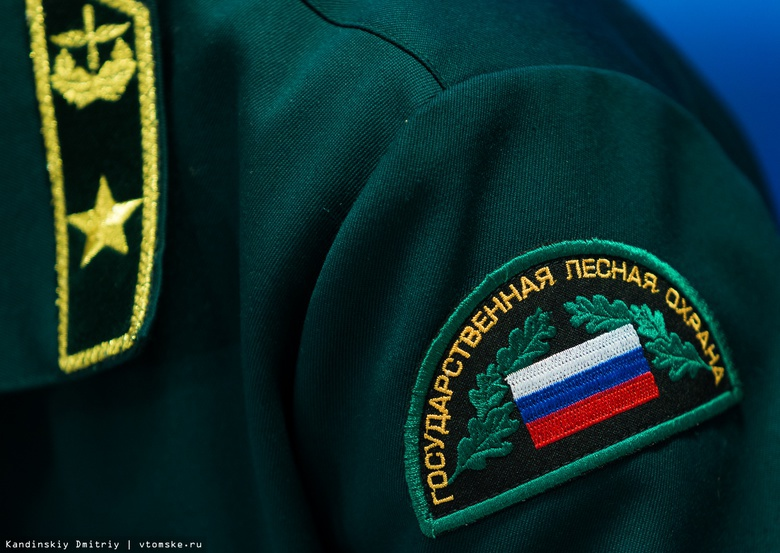 Шесть пожаров потушили в лесах Томской области за сутки