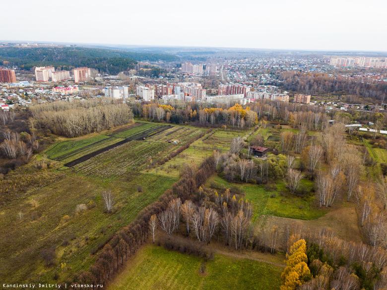 Суд обязал мэрию Томска провести инвентаризацию городских лесов