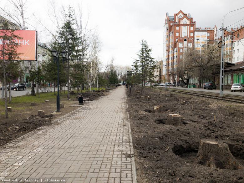 Благоустройством проспекта Кирова почти за 50 млн руб займется томский «Микран»