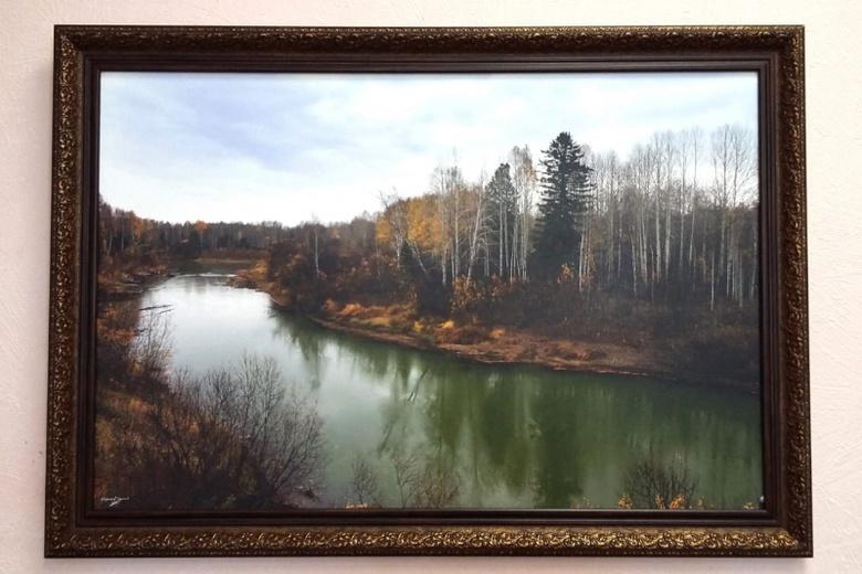 УМВД: 20-летний колпашевец украл 5 картин на выставке