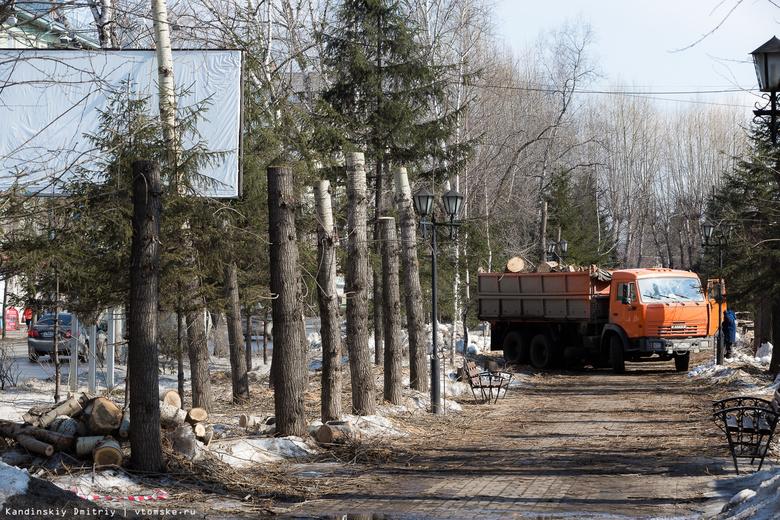 Гигантские шахматы и фонтан планируют установить на бульваре Кирова в Томске