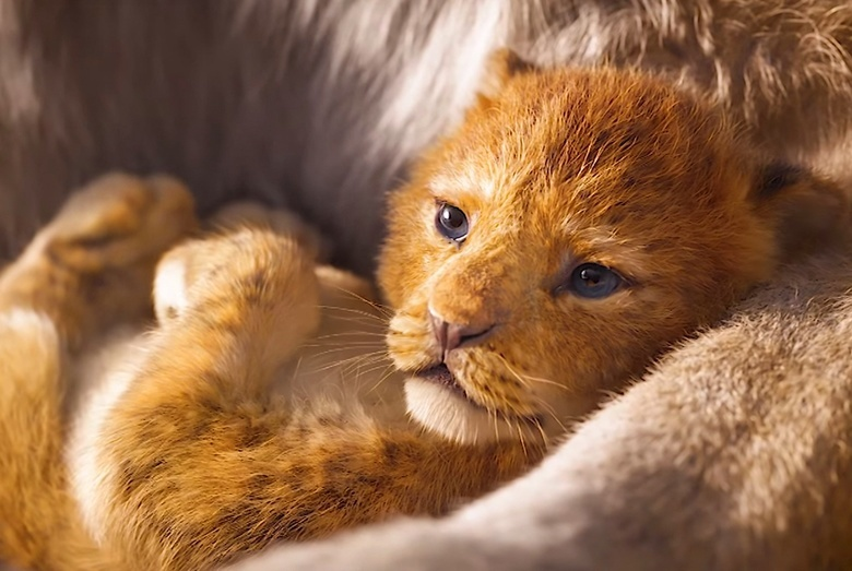 Киноафиша: «Король лев» оживает на больших экранах