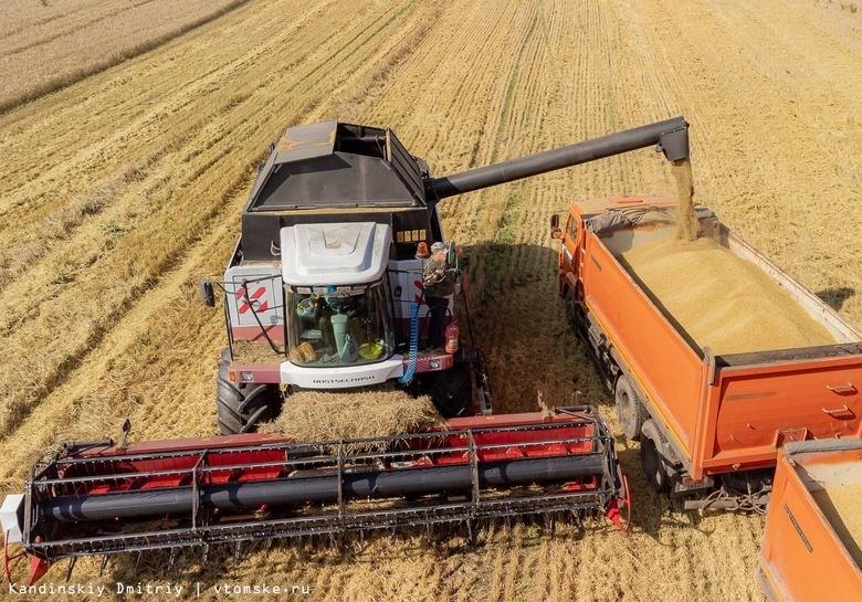 Более 320 тысяч тонн зерна собрали аграрии с полей в Томской области