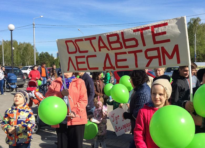 Горожане на слушаниях проголосовали за создание 20 лесопарковых зон вокруг Томска
