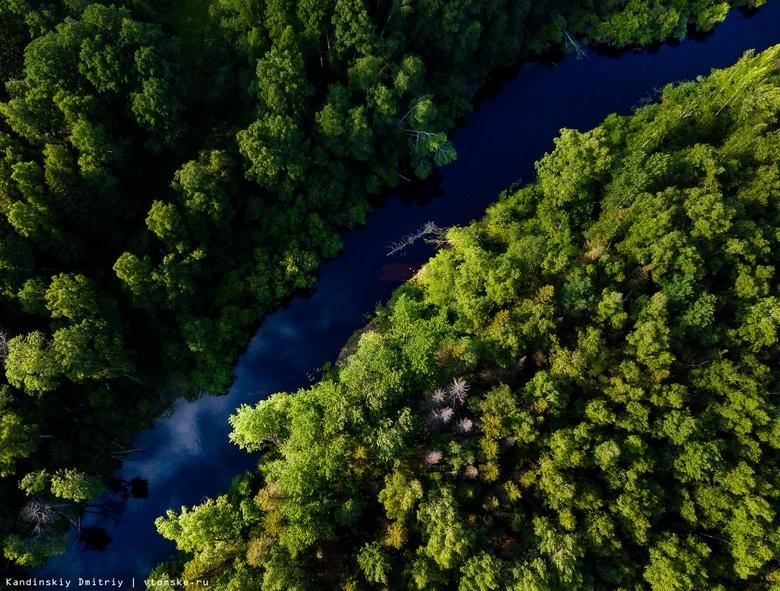 Пытавшаяся переплыть реку в Стрежевом женщина едва не утонула на полпути