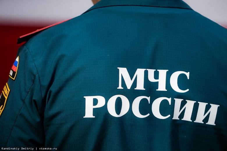 Более 30 человек ищут двух подростков, которые ушли из лагеря вблизи Томска