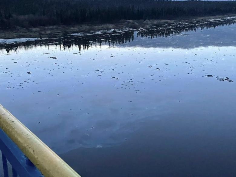 Экологическая катастрофа в Коми: нефть загрязнила землю и реки