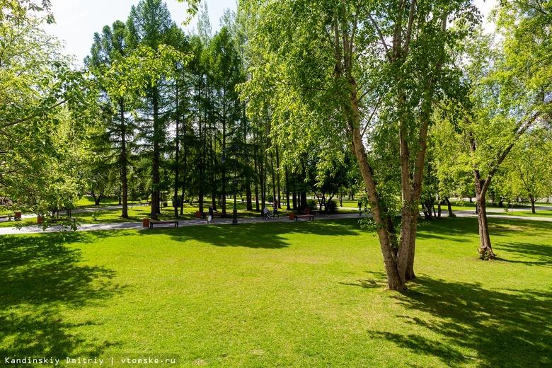 Четыре района Томской области завершили благоустройство скверов