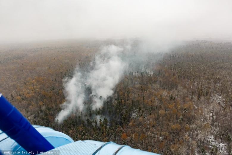 Специалисты ликвидировали за сутки 15 лесных пожаров в Томской области