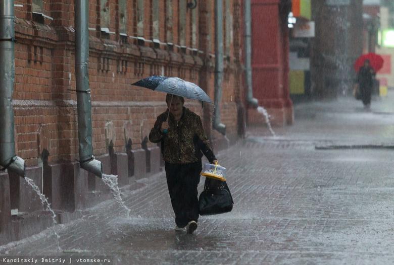 Осадки и порывы ветра до 22 м/с ожидаются в Томске в понедельник