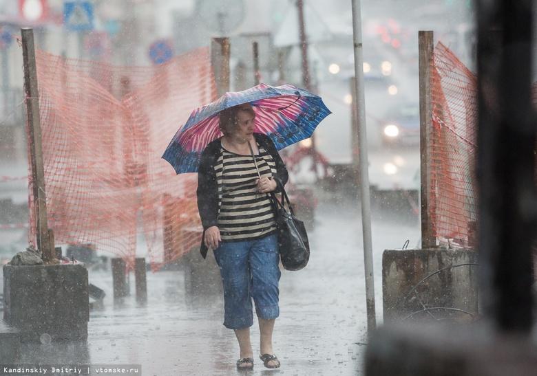 Синоптики прогнозируют грозы и сильный ветер до конца недели в Томске