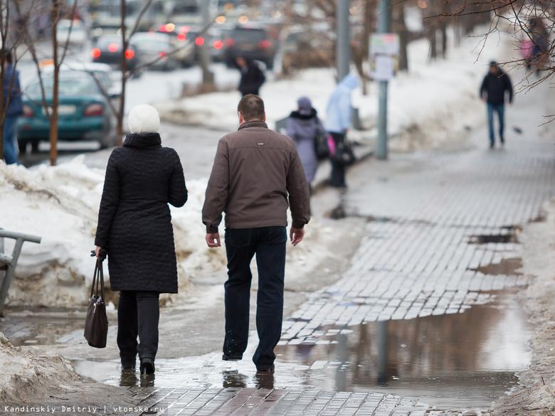 Потепление до +2°С ожидает томичей в День защитника Отечества