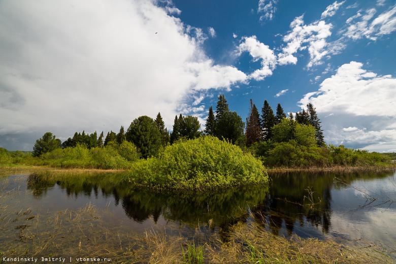 Томская область заняла 21 место в экологическом рейтинге регионов РФ