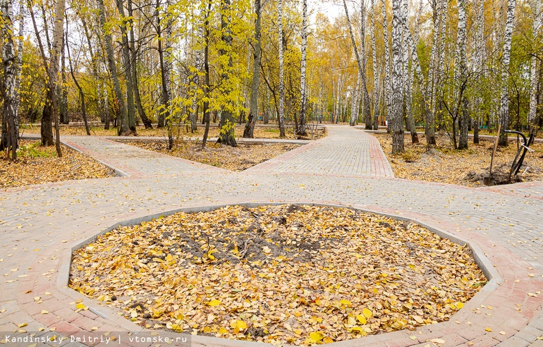 Мэрия: работа над тропой от Лагерного сада до «Буревестника» затянется до 15 октября
