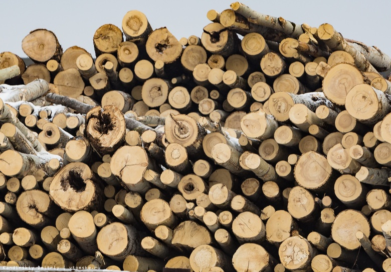 Приставы опечатали пункт приема и отгрузки древесины в Шегарском районе