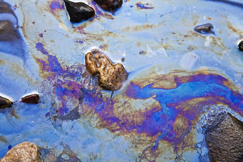 СХК проводит проверку из-за следов нефтепродуктов в технологическом канале, впадающем в Томь