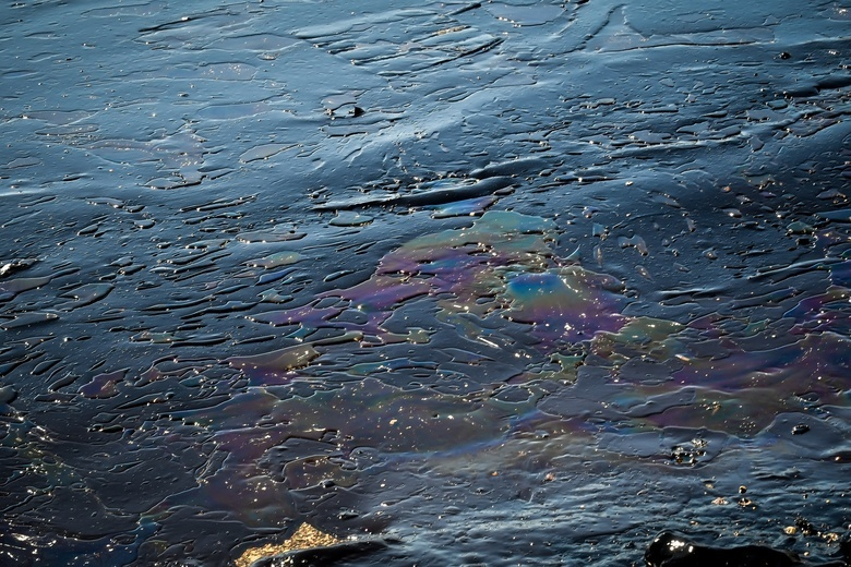СК опубликовал видео разлива нефти на Оби в Томской области