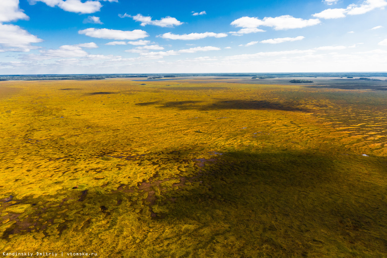 Крупнейшее болото Северного полушария получило статус заповедника