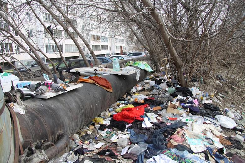 Жители многоквартирника по Ивана Черных жалуются на свалку с крысами рядом с домом