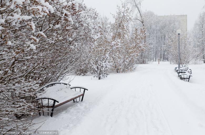 Умеренно морозная погода ожидается в Томске в выходные