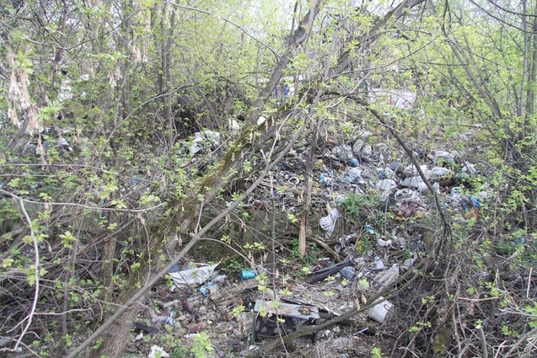 Горожане жалуются на отсутствие мусорных контейнеров в томском поселке